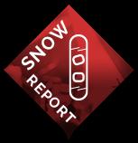 ski-report-bug (2)